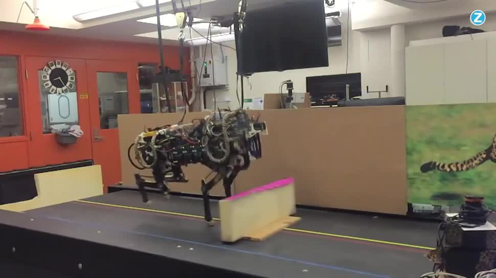 Forschung, Zoomin, Roboter, MIT, Massachusetts Institute of Technology, Gepard