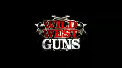 Nintendo, Wii, Wild West Guns