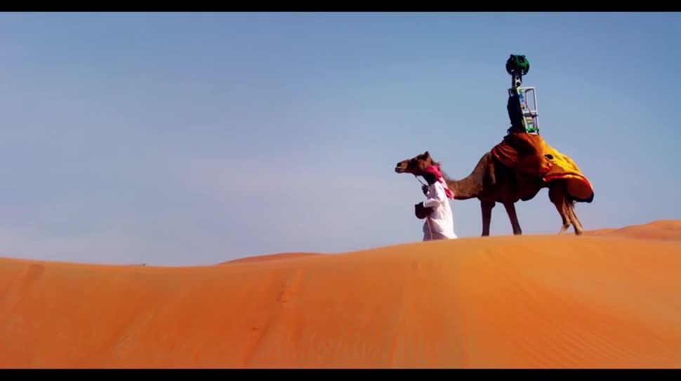 Google, Google Maps, Street View, Panorama, Trekker, Wüste, Vereinigte Arabische Emirate, Liwa, Oase