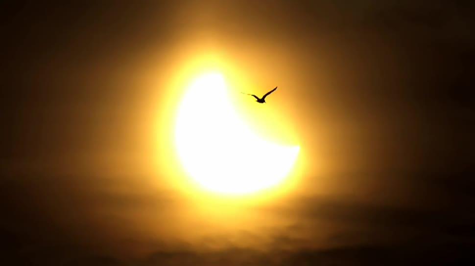 Solar, Sonne, Sonnenfinsternis, Blackout, Stromnetzbetreiber