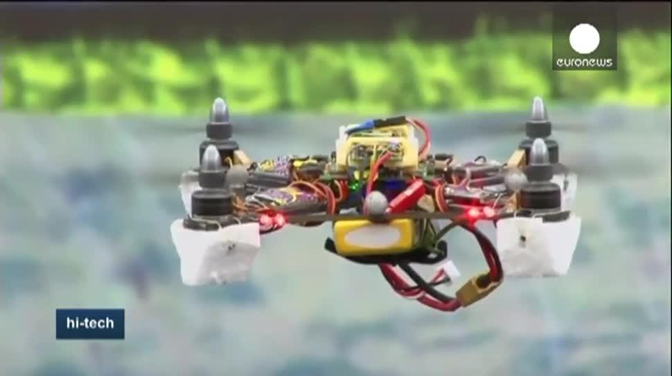 Roboter, Drohne, Drohnen, EuroNews, Bienen, Universität in Marseille, CNRS, BeeRotor