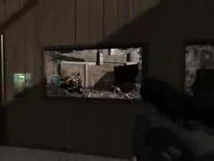 Shooter, Duke Nukem, Action, 3d Realms