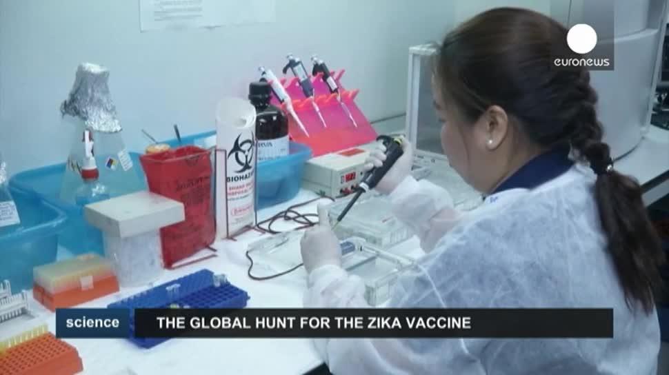 Forschung, EuroNews, Gesundheit, Viren, Impfstoff, Zika-Virus, Zika, NIAID