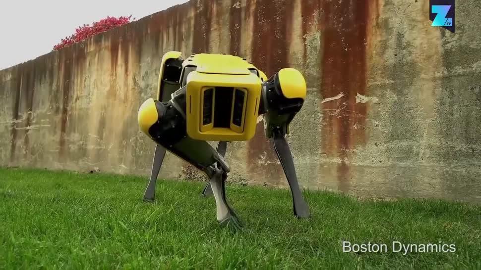Forschung, Zoomin, Roboter, Robotik, Boston Dynamics, SpotMini