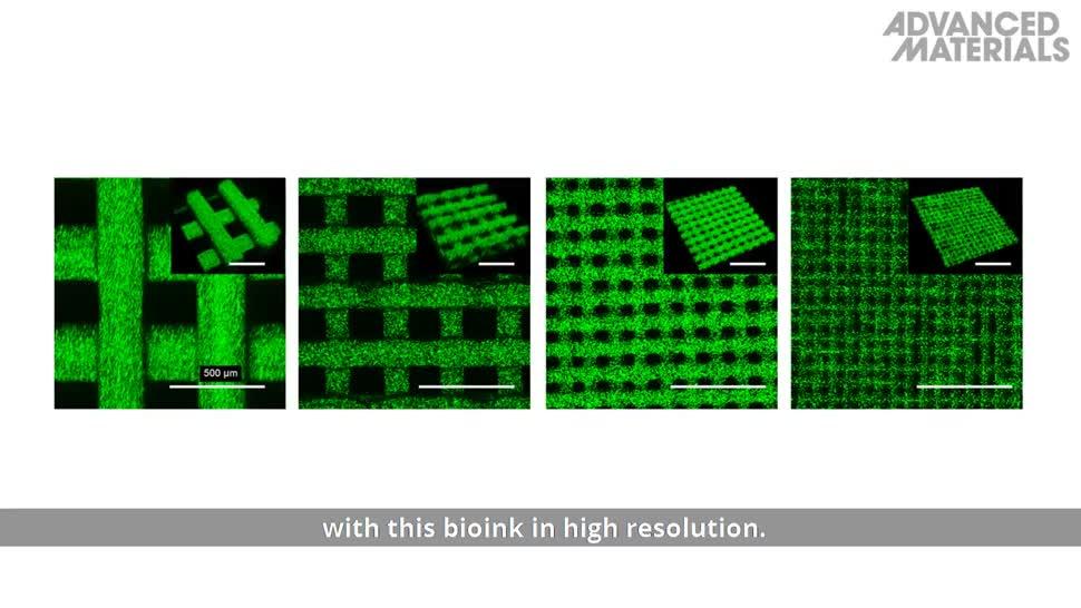 Forschung, Wissenschaft, Elektronik, Sensor, MIT, Biologie, Bakterien, Proteine