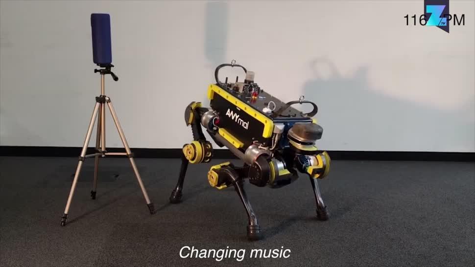 Zoomin, Roboter, Robotik, ETH Zürich, Anymal