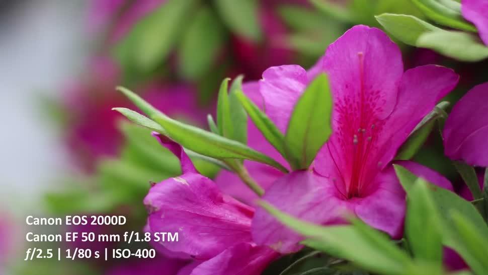 ValueTech, Digitalkamera, Canon, Dslr, EOS 2000D