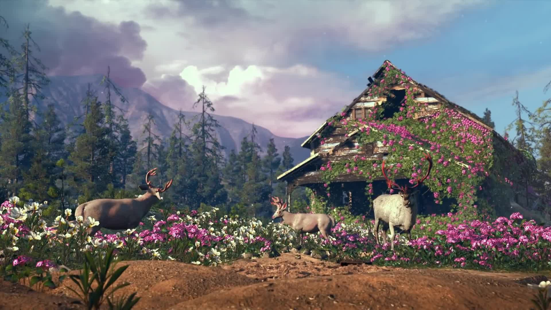 Trailer, Ego-Shooter, Ubisoft, Far Cry, Far Cry New Dawn, New Dawn