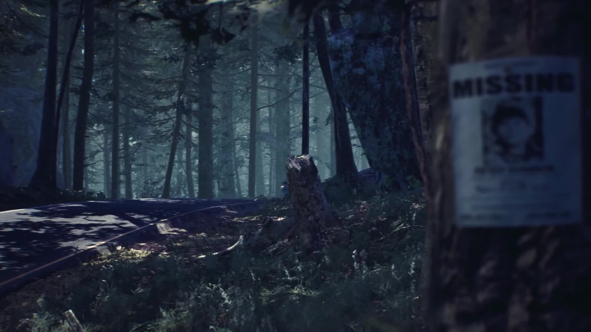 Trailer, Adventure, Horror, Survival Horror, Bloober Team, Blair Witch