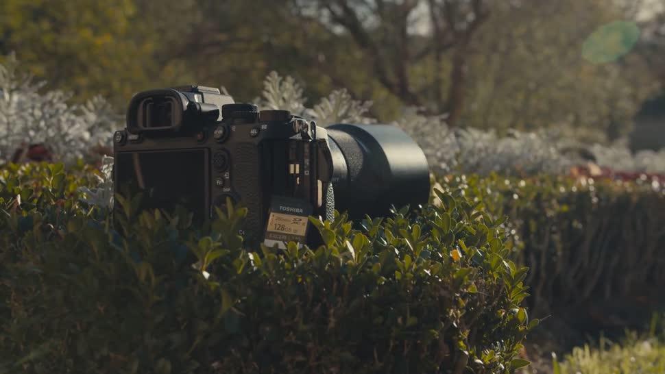 Sony, Kamera, ValueTech, Fotografie, Dslr, Vollformat
