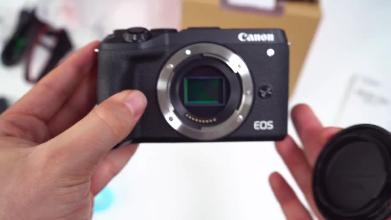 Canon, DSLM, Systemkamera
