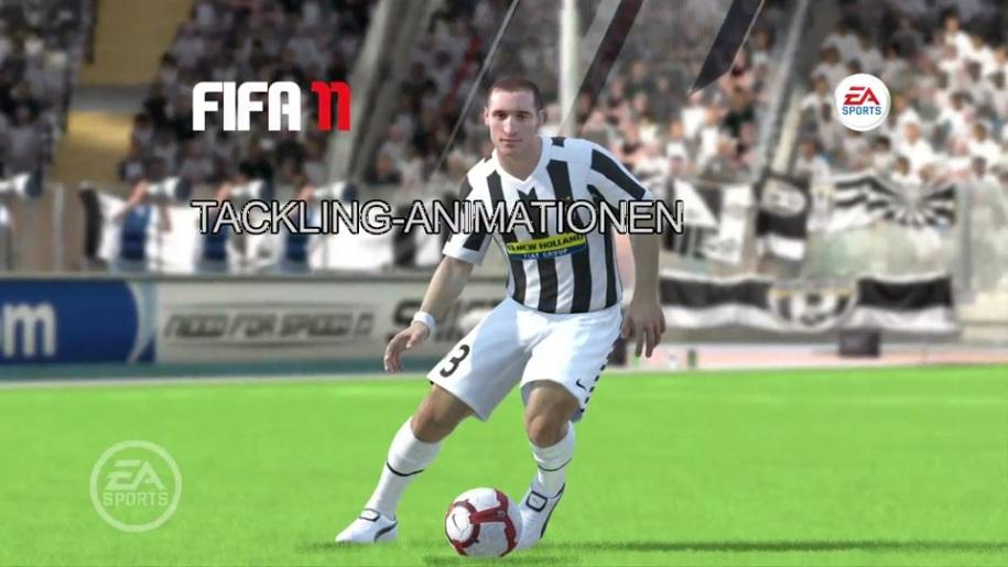 Fußball, Fifa, Interview, FIFA 11