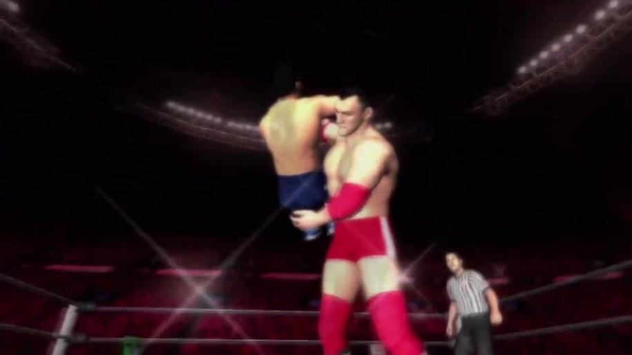 Gameplay, Wrestling, WWE, SmackDown vs. Raw 2011