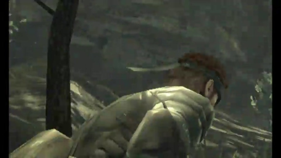 Gameplay, Metal Gear Solid, Snake Eater 3D