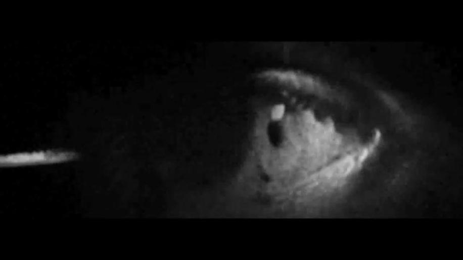 Trailer, Insane