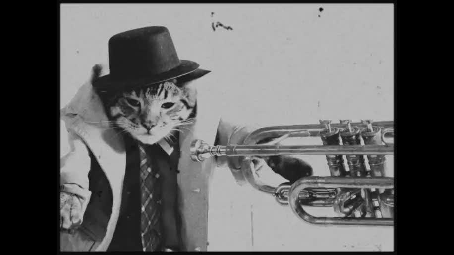 Youtube, Viral, 1911