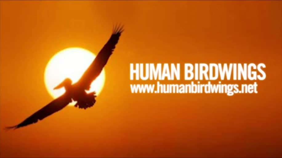 Fliegen, Human Birdwings
