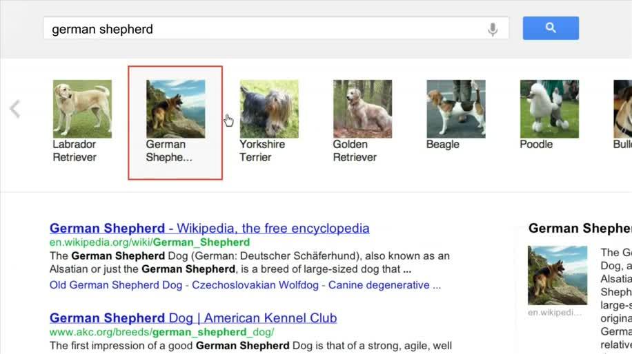 Google, Suchmaschine, Suchergebnisse, Knowledge Graph