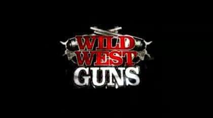 Nintendo, Wii, Wild West Guns
