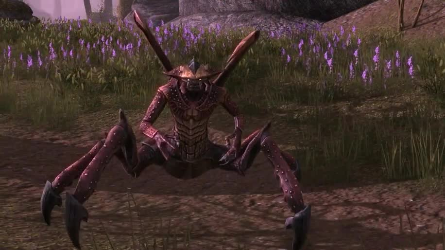 Rollenspiel, Mmorpg, Mmo, Bethesda, Online-Rollenspiel, The Elder Scrolls Online, The Elder Scrolls, Zenimax